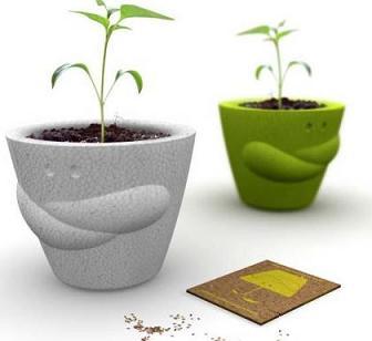 Consejos para plantar en maceta