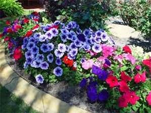 Consejos para comenzar a plantar en el jardín