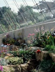El invernadero alpino de Kew (Londres) 4