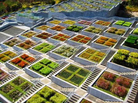 El jardín botánico de Hyakudanen (Japón)