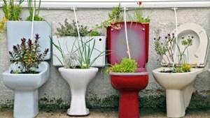 Reciclar para plantar 7