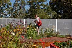 The Burnley Living Roofs: Sostenibilidad y biodiversidad al servicio de las ciudades. 2