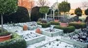 Los cuidados del jardín en diciembre