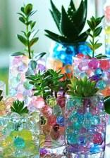 Cristal-de-barro-cultivo-sin-suelo-de-plantas-flores-plantas-verdes-hidrop&oacute