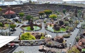 jardindecactus_lanzarote01