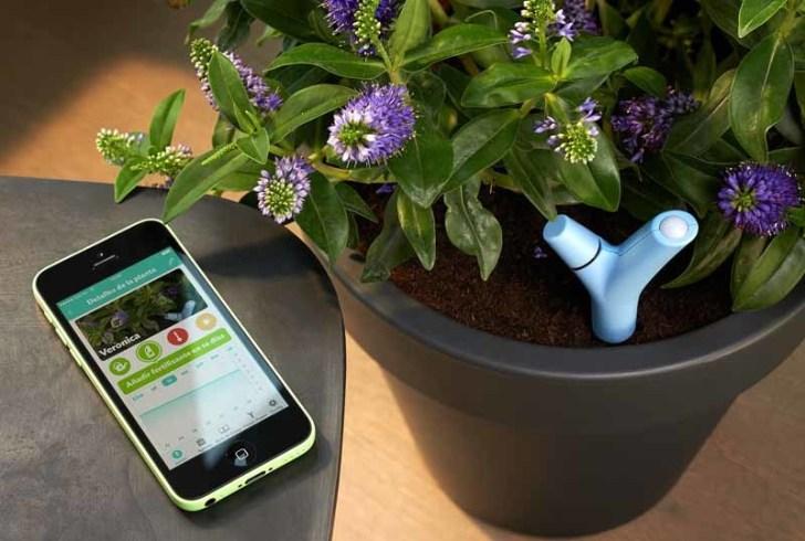 sensor Flower Power