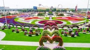 Dubai Miracle
