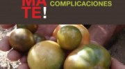 Toma tomate; el huerto bio sin complicaciones