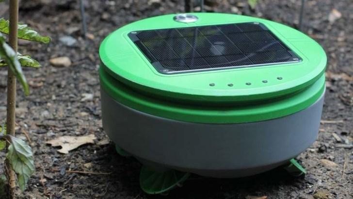 Cuidado robótico de plantas con Tertill