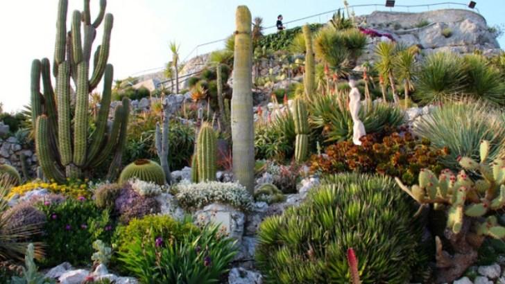 El Jardín Exótico de Eze