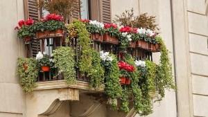terraza-con-flores