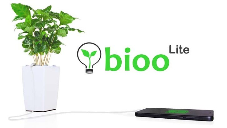 Plantas que dan cobertura Wi-Fi