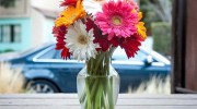 Decora tu hogar con flores