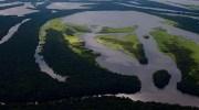 Amazonas, el pulmón verde del planeta