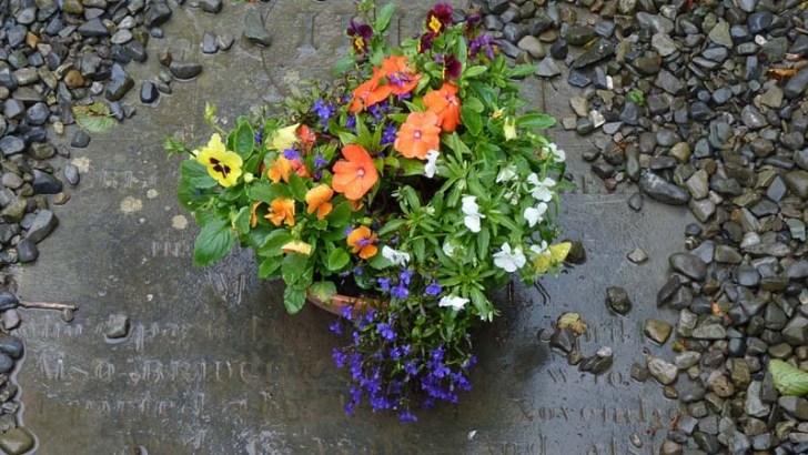 Natufienses, los primeros en poner flores a los difuntos