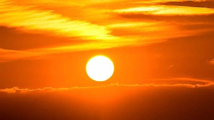 Cómo se protegen las plantas de la radiación UV