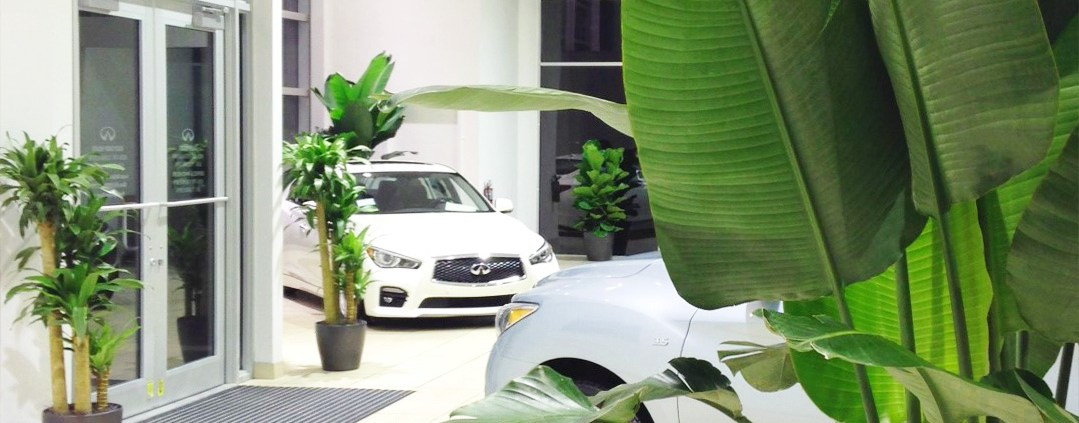 indoor-commercial-landscaping-car-dealer