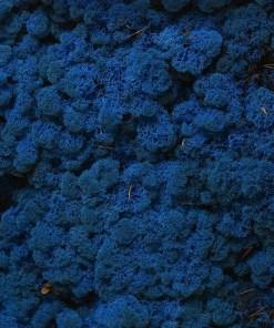 rendiermos blauw 4kg