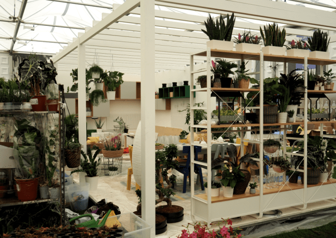 Millennials will be delighted to see houseplants a the heart of show