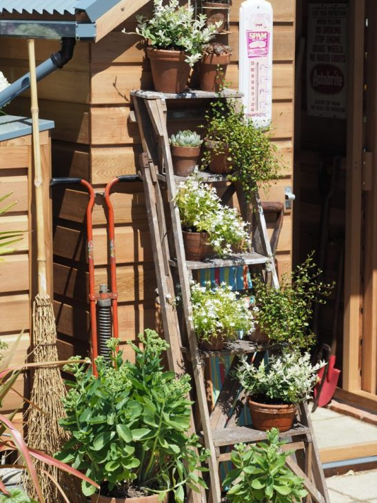We loved the use of these old steps as a plant display