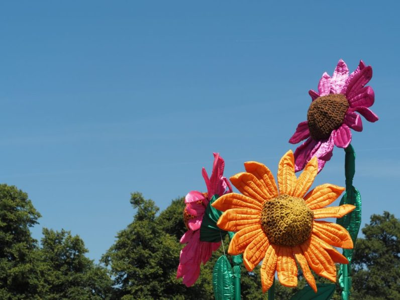 Flowerus knittedus