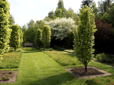 The avenue, with manicured lawns and wildflower meadows grow side by side