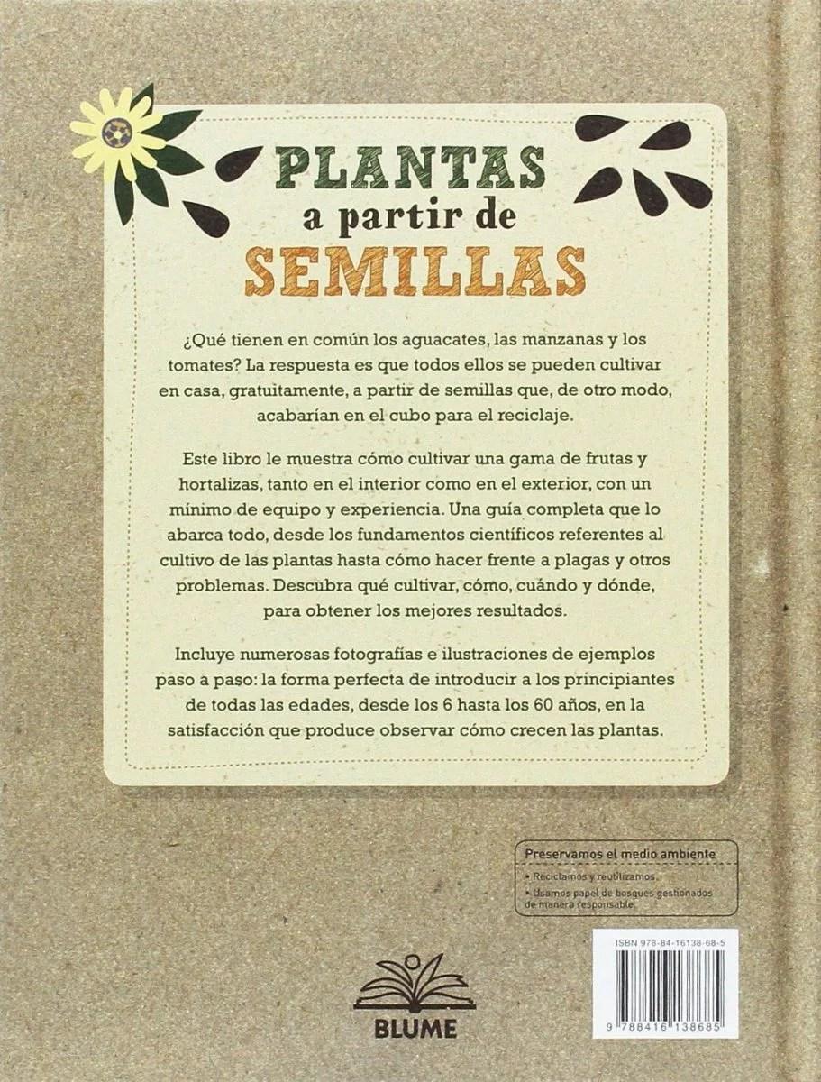 plantas-a-partir-de-semillas2