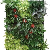 wall plant container