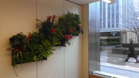 Interior Plantscape Design and Installation