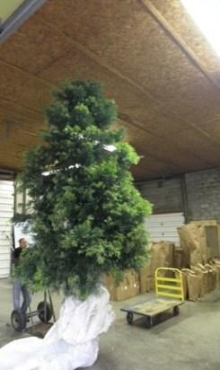 podo tree