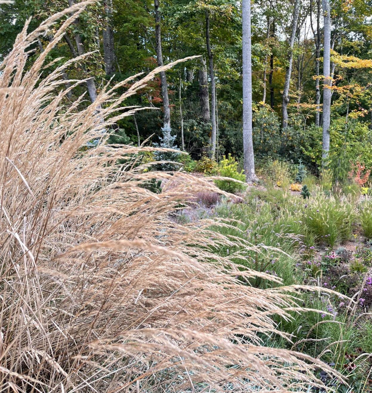 Raised Garden Soil