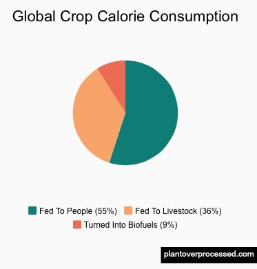 Will GMOs Feed the World?   Plant Over Processed