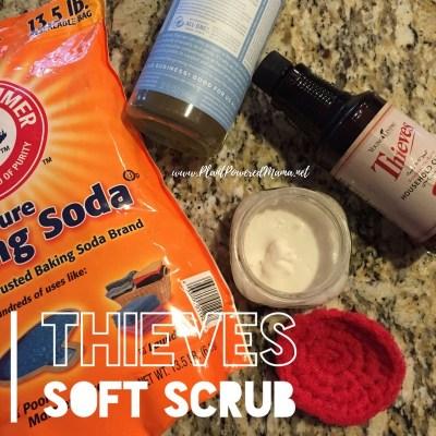 DIY Thieves Soft Scrub- a game changer!