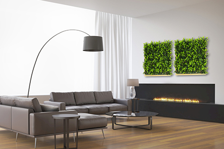 framed plant wall indoor