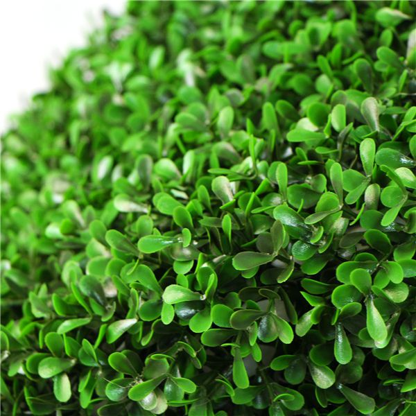 fresh green artificial hedges lettering
