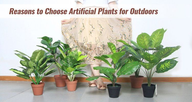 reasons to choose artificial plants for outdoor