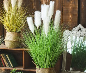 application-of-faux-pampas-grass