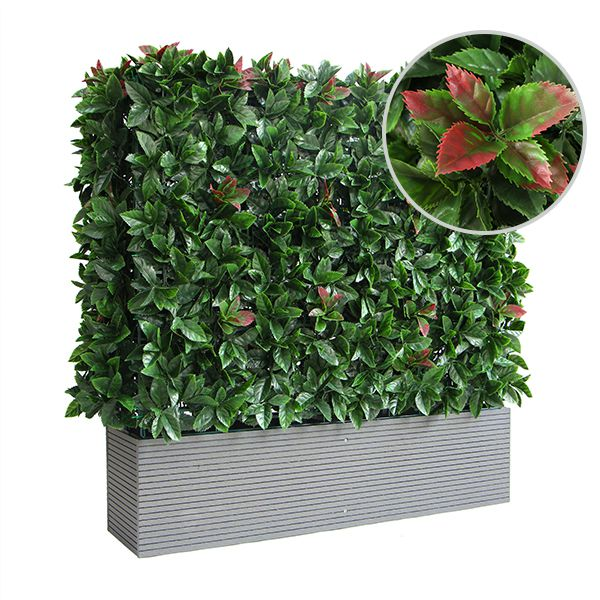 photinia leaf of artificial planters
