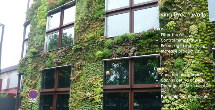 pros and cons of living green walls