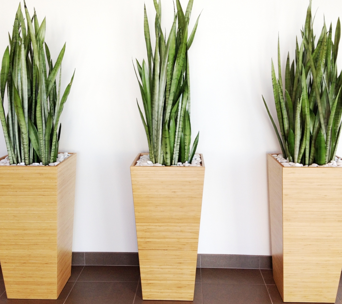 Front Office Decorating Ideas