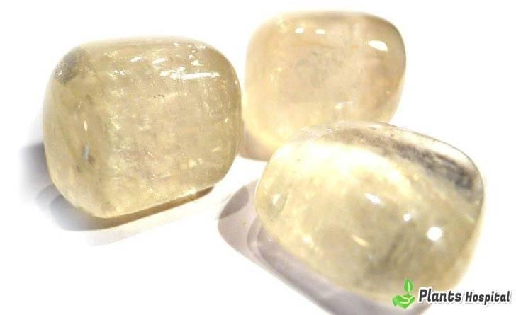 """beneficios de piedra de calcita """"width ="""" 728 """"height ="""" 445 """"srcset ="""" https://i2.wp.com/www.plantshospital.com/wp-content/uploads/2019/07/calcite-stone-benefits.jpg?w=1140&ssl=1 728w, https: //www.plantshospital.com/wp-content/uploads/2019/07/calcite-stone-benefits-300x183.jpg 300w """"tamaños ="""" (ancho máximo: 728px) 100vw, 728px """"></p> <h2>¿Qué es la piedra de calcita?</h2> <p><strong>Piedra de calcita</strong> aumentará el flujo de energía en tu cuerpo y te ayudará en tu expansión mental. Habrá un cambio en su perspectiva y un renovado sentido de compromiso que hará todo lo que quiera hacer.</p> <p><strong>Piedra de calcita</strong>, puedes mejorar tus habilidades de aprendizaje. Es un gran cristal tener al aprender una nueva habilidad o idioma o al prepararse para un examen importante. Porque tu mente será como una esponja que absorberá todo. <strong>Piedra de calcita</strong> También es un cristal altamente protector. Puede protegerlo de energías negativas o ataques físicos y psíquicos no deseados.</p> <div class="""