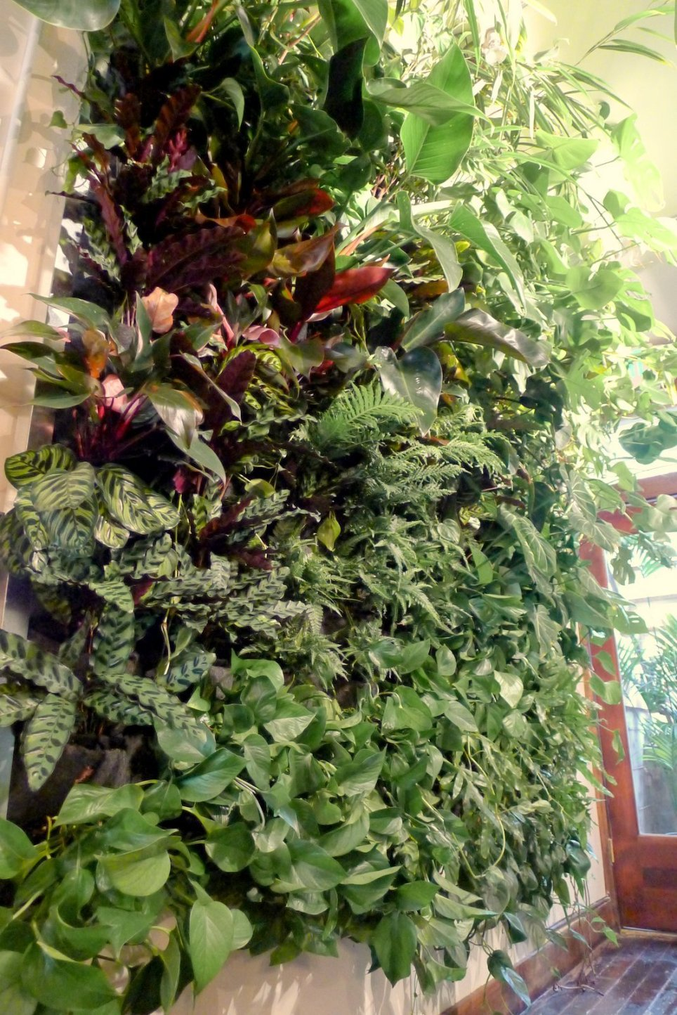 Chris-Bribach-Plants-On-Walls-Florafelt-Vertical-Garden-Population-Hair-Salaon-Jungle-3