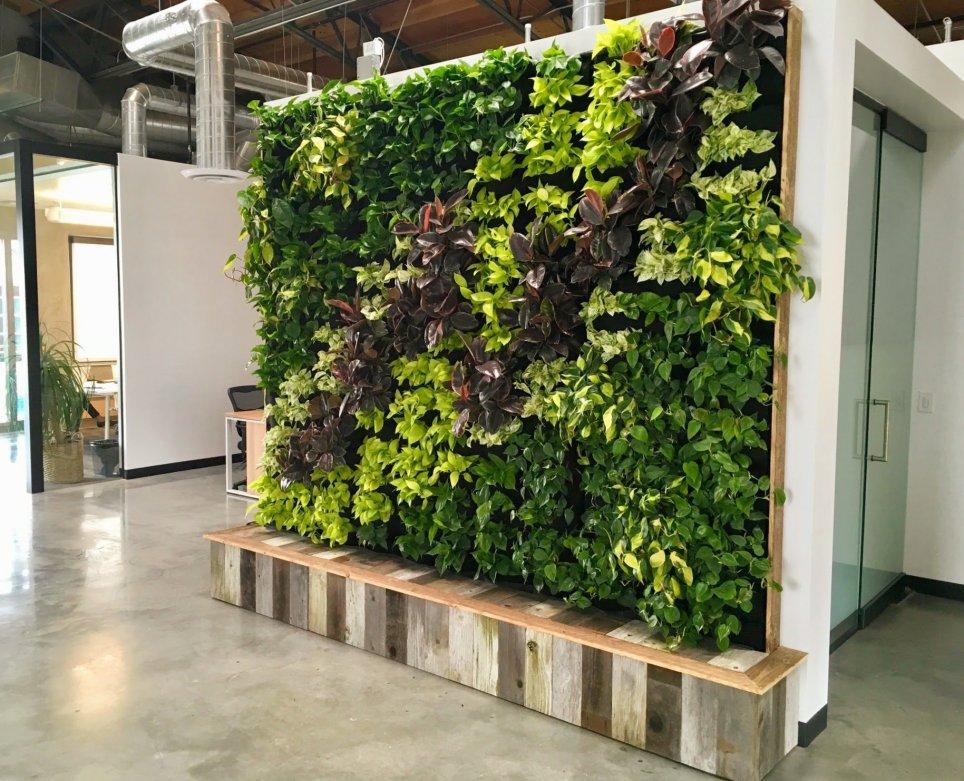 Florafelt Vertical Garden for Yoobi Los Angeles by Tucker Warner Design Build