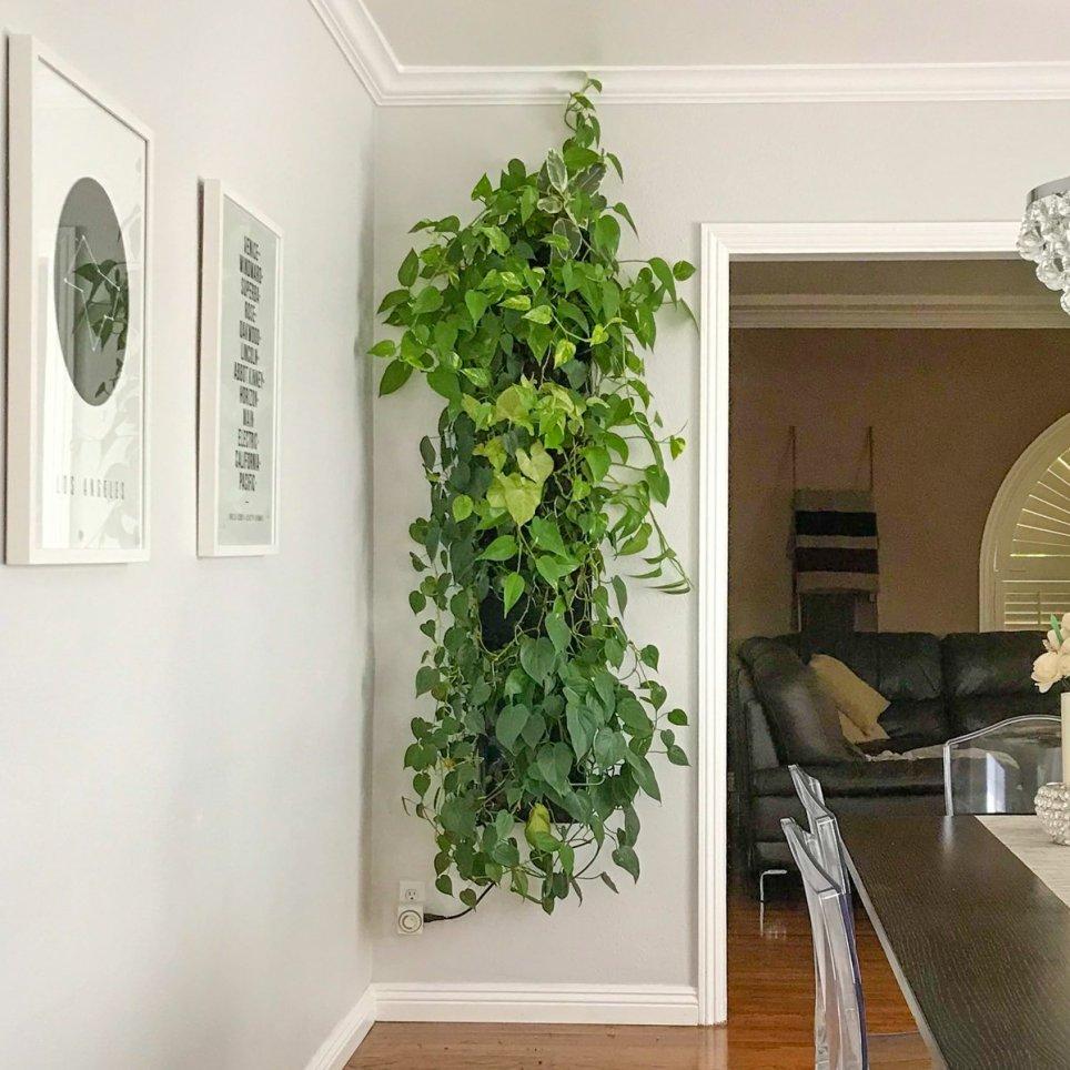 Florafelt Compact Kit Vertical Garden by Tucker Warner
