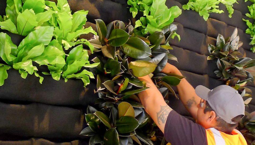 Florafelt® Pocket Panels vertical garden installation.