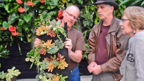 Plants On Walls Floraflet Pockets Vertical Garden Succulents Demonstration