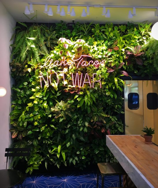 Living Wall for Taco Tu Madre Los Angeles by Mitzy Florals. Made with Florafelt pocket panels.