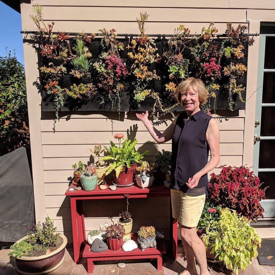 Florafelt Pocket Panels Succulent Vertical Garden Jane Surich