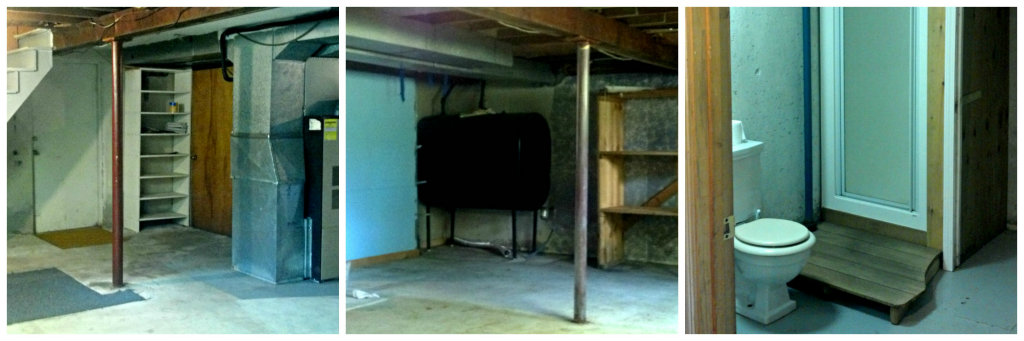 Basement - Before | Plaster & Disaster