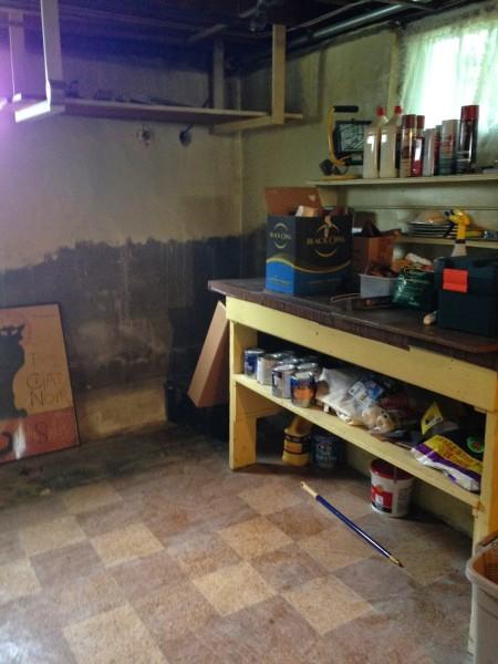 Basement before -- Plaster & Disaster